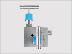 Two Valve Manifold Remote Mount from KALPATARU PIPING SOLUTIONS
