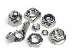 Stainless Steel Nuts from AAKASH STEEL