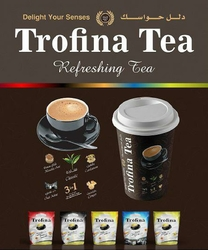 Tea Premix 3in1 from TROFINA FOOD MIDDLE EAST FZC