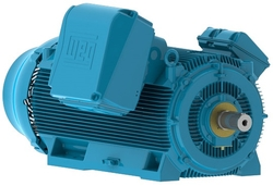 Electric motors from TECHNOMAX INDUSTRIAL SERVICES LLC