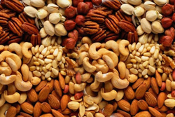 Dry Fruits And Nuts from SHYAM SUNDER EXPORT HOUSE