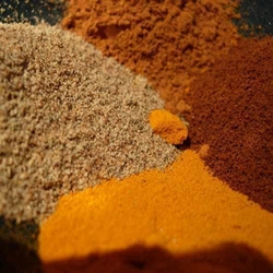Spices And Derivatives from SHYAM SUNDER EXPORT HOUSE