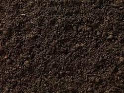 Sweet Soil Supplier in UAE