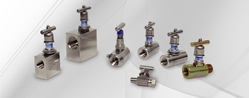 INSTRUMENTATION VALVES  from FRAZER STEEL FZE