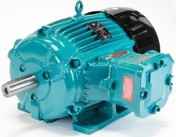 Python Electric Motors In Dubai. from MURAIBIT SHIP SPARE PARTS TRADING LLC