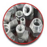 HASTELLOY FORGED FITTING from SAPNA STEELS