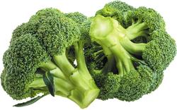 Broccoli Extract   Glucoraphanin    glucosinolate