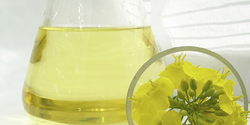 CONDAT vegetable-based water-soluble oils- UAE from MILLTECH FZE