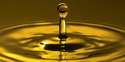 CONDAT Oils for screw and piston compressors UAE from MILLTECH FZE