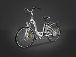 Electric Bike/pedelec-ts-eb006