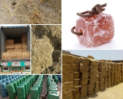 Animal And Poultry Feed Mfrs And Suppliers