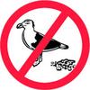 BIRD CONTROL SERVICES FUJAIRAH