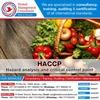 HACCP consultants