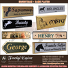Equestrian name plates