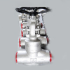 Carbon Steel Forged Globe Valve