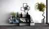 Buy Premium & Luxurious Plants Online in Kuwait