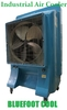 Industrial Air Cooler BC300M
